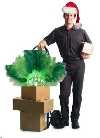 DeliveryManChristmas